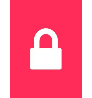 Sisteme de securitate